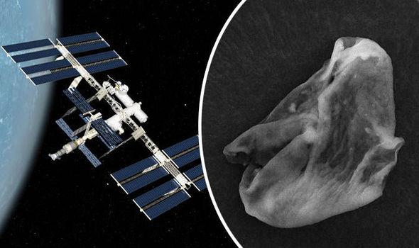 ISSが採取したサンプルから地球外生命体の証拠を発見!!