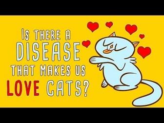 愛猫家が猫好きなのはトキソプラズマ感染が原因かも?!