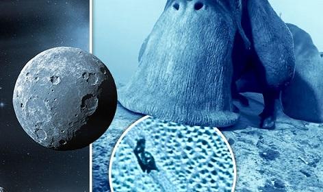 冥王星で「宇宙カタツムリ」発見か?!NASAの画像に専門家も大興奮!