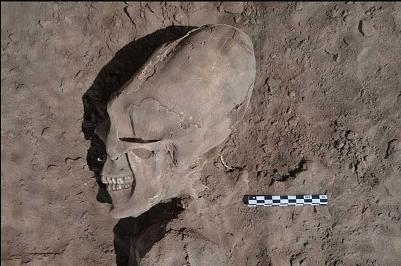 メキシコで「宇宙人のような」奇妙な頭蓋骨が13体発掘される