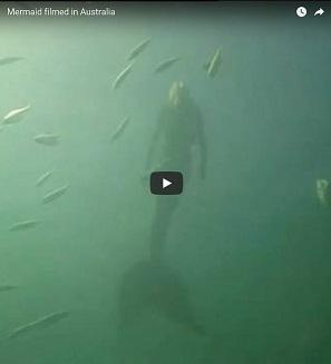 人魚は実在した?!グレートバリアリーフで撮影された人魚