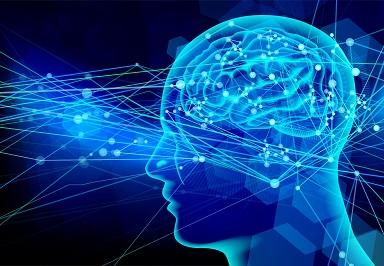 人間の身体自体がタイムマシン?!人は10秒先の出来事を予知できることが判明