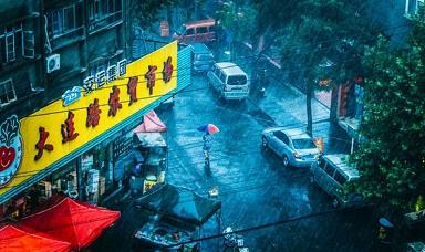 空から海の生き物が降ってきた?!中国の爆弾低気圧による豪雨で珍現象