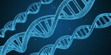 DNA鑑定で死亡が確定した男が2ヶ月後生きて帰宅!!
